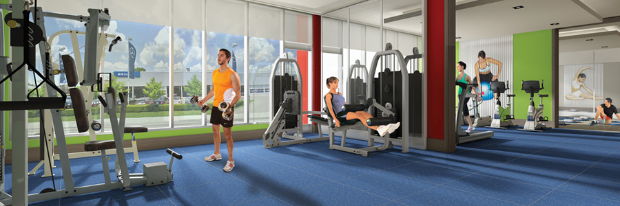 iq-fitness